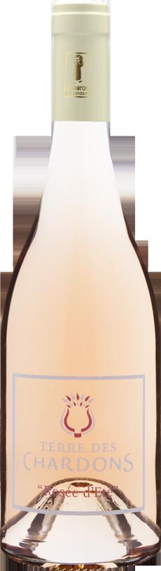 Rosée d'Été - Terre des Chardons
