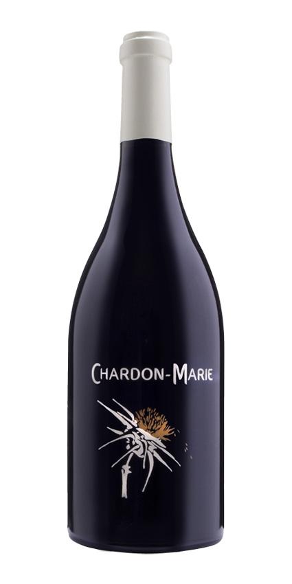 Chardon-Marie - Terre des Chardons